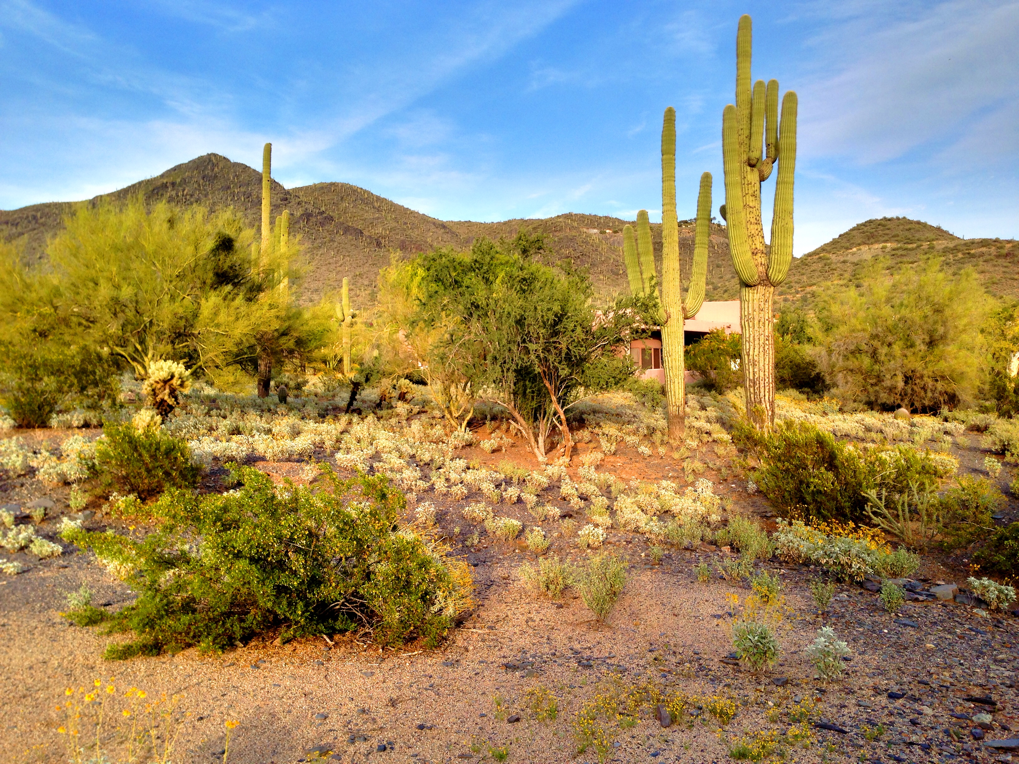SOLD – Gorgeous property land lot Cave Creek – Black Mountain – Carefree Sentinel Rock Estates